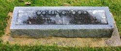 William Alexander Collingwood
