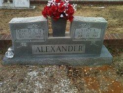 Nancy Ann <i>Bryant</i> Alexander