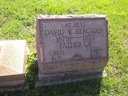 David W. Bergman
