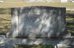 Elizabeth <i>Newton</i> Barnes