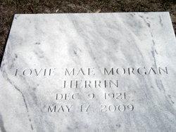 Lovie Mae <i>Morgan</i> Herrin