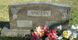 Terry H. Anglin