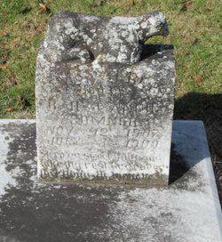 James Albert Sumner