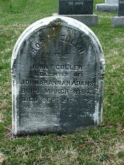 Ellen <i>Adams</i> Coller