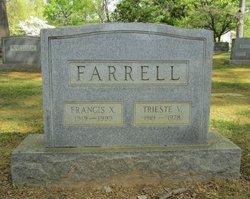 Trieste V. <i>Bibbiani</i> Farrell