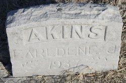 Earldene J Akins