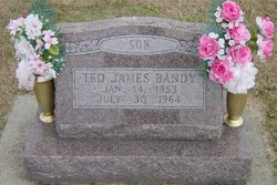 Ted James Bandy