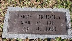 Harry Herbert Bridges