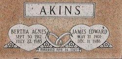 James Edward Akins