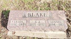 Louisa Lydia <i>Rinehart</i> Blake