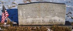 Dale Wing Birdsall