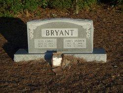 James Andrew Bryant