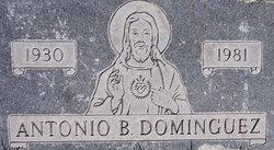Antonio B Dominguez