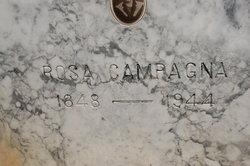 Rosa <i>Pagano</i> Campagna