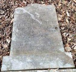 Annie J. <i>Hobson</i> Clements