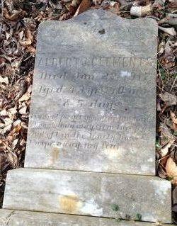Albert J. Clements