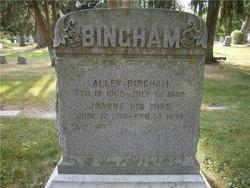 Joanna <i>McColiff</i> Bingham