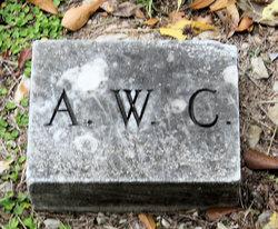 Arthur W. Collins