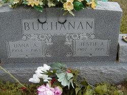Dana A Buchanan