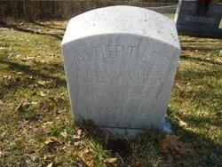Albert Lee Alexander