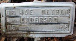 Joe Nathan Anderson