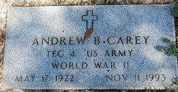 Andrew B. Carey