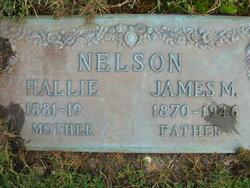 James Moles Nelson