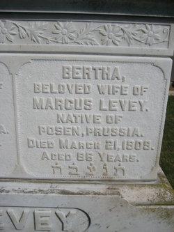 Bertha <i>Aaron</i> Levey
