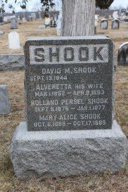 David M Shook