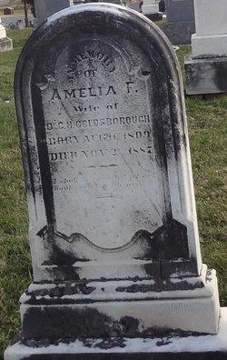Amelia F <i>Poe</i> Goldsborough