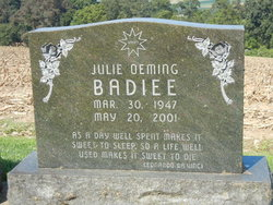 Julie Anne <i>Oeming</i> Badiee