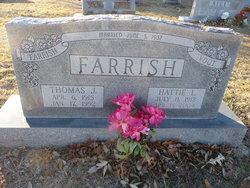 Thomas Jules Farrish