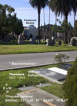 Gen Theodore H. Bachenheimer
