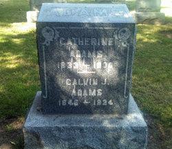 Calvin J Adams