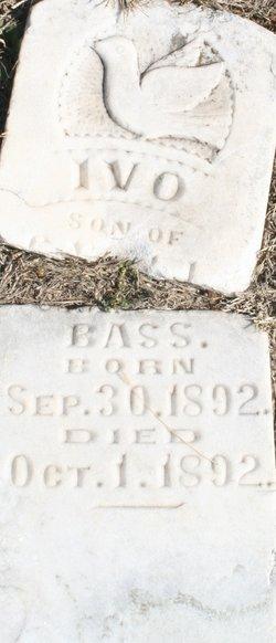 Ivo Bass