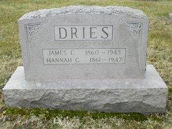 James C Dries