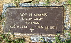 Roy H Adams