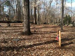 Phifer Family Cemetery