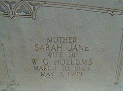 Sarah Jane <i>Peek</i> Hollums