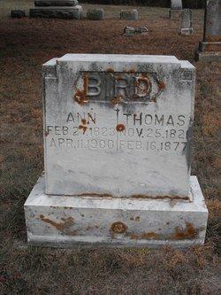 Thomas Bird
