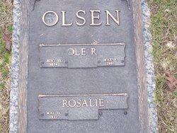 Ole Reginald Olsen