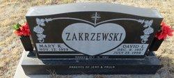 David L Zakrzewski