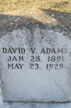 David Vinson Adams