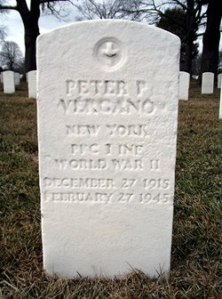 Peter P Vergano