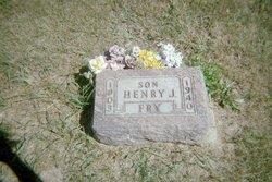 Henry John Fry