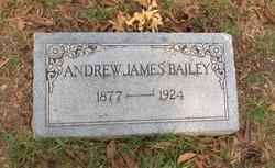 Andrew James James Bailey