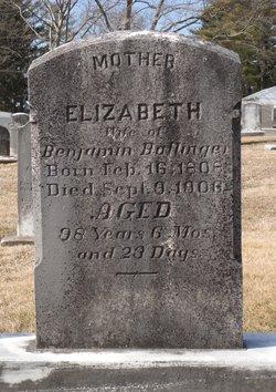 Elizabeth <i>Herchelroth</i> Bollinger