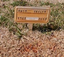 Andy Sky Bailey Bailey