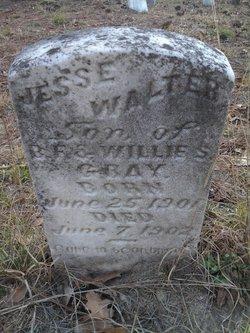 Jesse Walter Gray