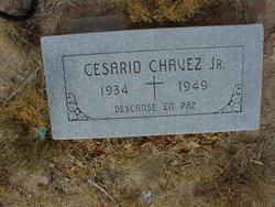 Cesario Chavez, Jr